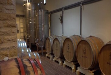 Porodica Milanović iz Velike Drenove proizvodi sortna vina najboljeg kvaliteta