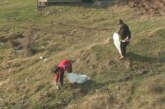 Meštani sela Zlatari organizovali akciju čišćenja jezera Ćelije