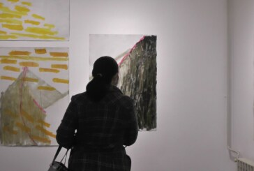 """U Umetničkoj galeriji otvorena izložba Gorana Vukadinovića pod nazivom """"Sloboda"""""""