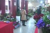U susret 8. martu u Kruševačkom pozorištu – tradicionalna prodajna izložba cveća