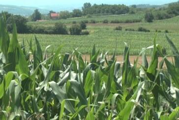 Pravilnik za subvecnionisanje opreme i mehanizacije za primarnu poljoprivrednu proizvodnju
