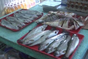 Srbi retko u jelovniku koriste ribu, osim za slavu, Badnji dan i Veliki petak