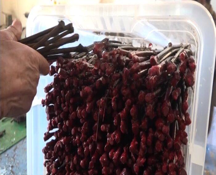 U Vino kalemu usavršavanje procesa izvodjenja kalema u vodi