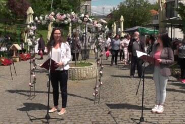 Sajam cveća otvoren u Miličininoj ulici u Kruševcu